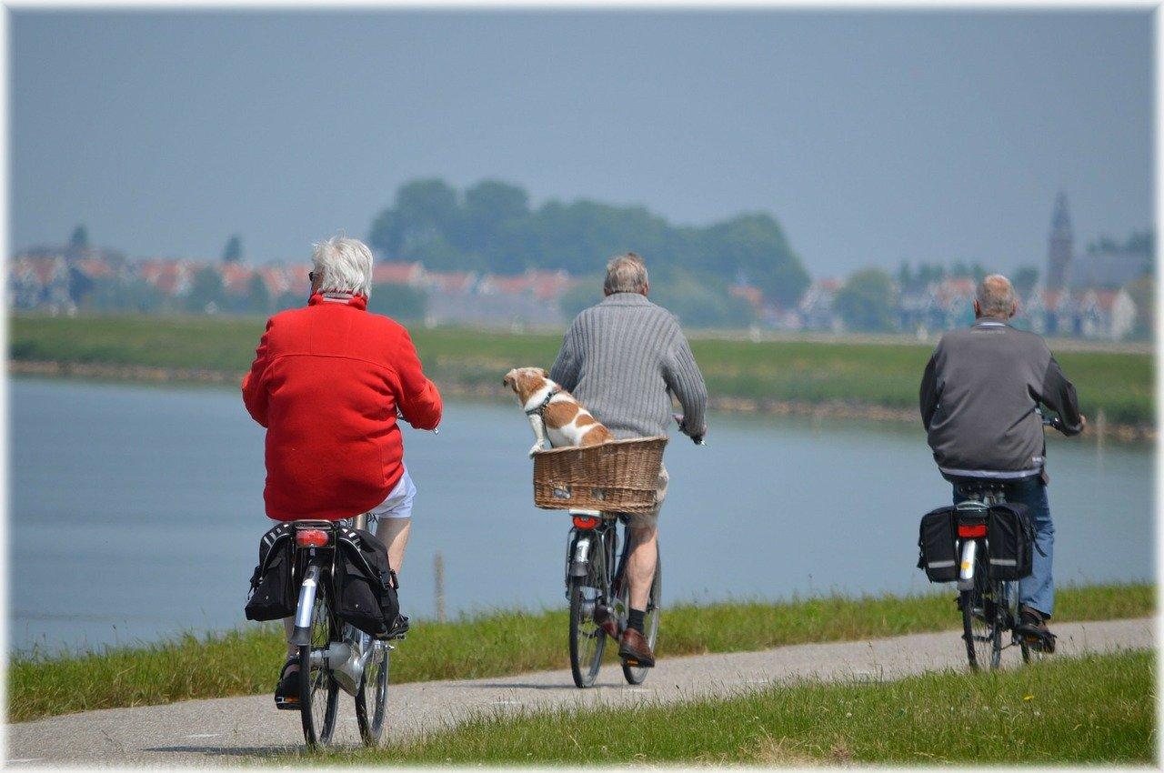 היציאה לקרוב והמופלא דרך טיולים מאורגנים בארץ למבוגרים