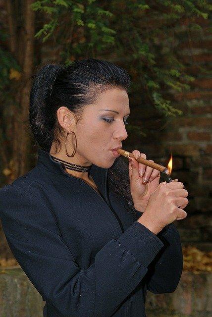 אביזרים למעשנים