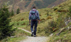 טיולים לגימלאים – כיף והעשרה עם מורה דרך