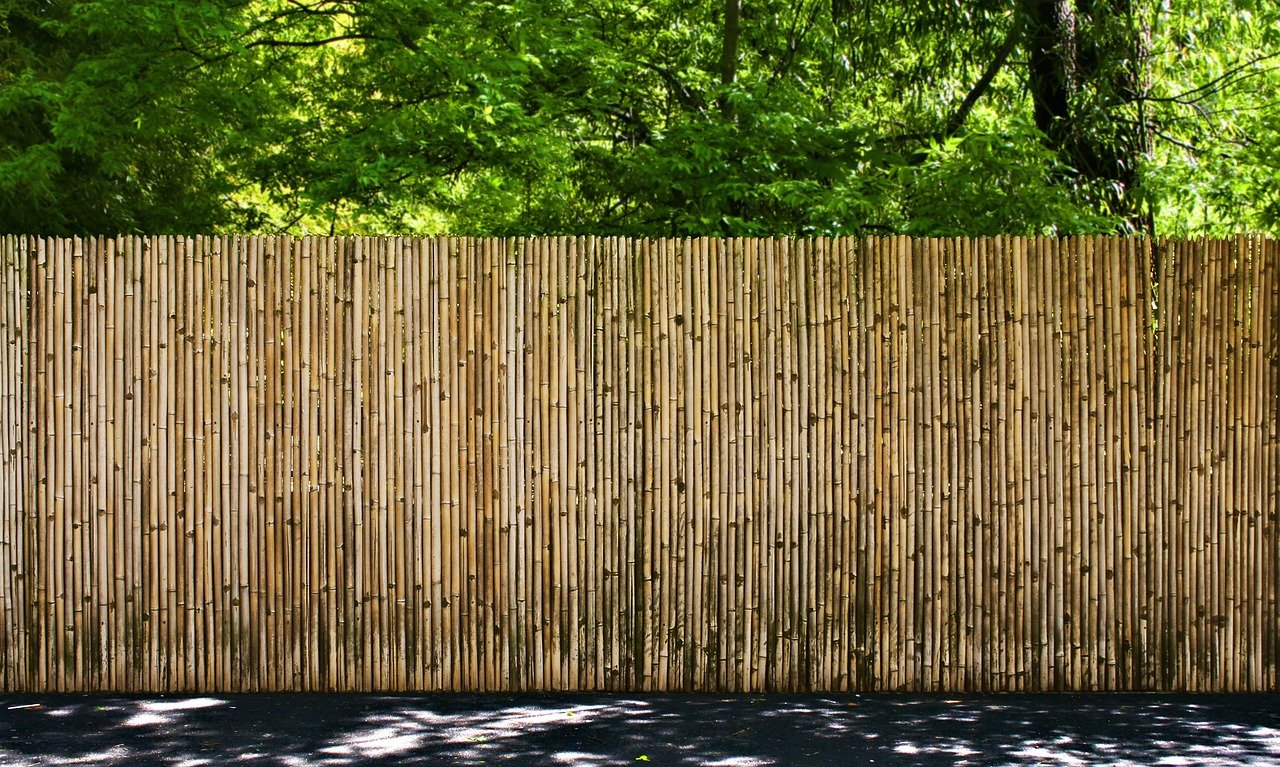 4 טיפים לבחירת גדר במבוק