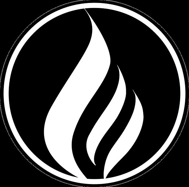 לוגו מנצח